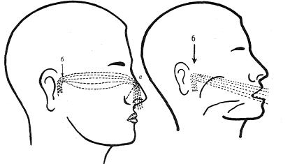 как влияет неправильное дыхание на голос при пении