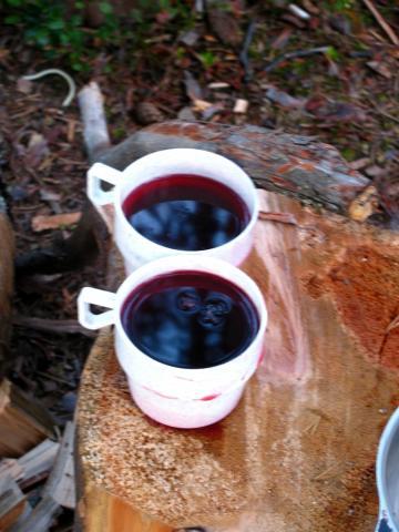 После купания мы приготовили ужин и сварили черничный компот