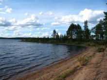 Карелия... Край необозримых лесов, безграничных озер, бурных рек и диких мужиков